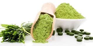Tamaño de mercado de productos de las algas, el estado, la demanda y prediccion en 2025 | Inicio tecla de jugadores (soluciones de energía de algas, zafiro, Solazyme, granjas de algas)