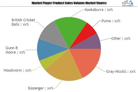 Bolas de Cricket mercado testigo de enorme crecimiento por los principales actores: gris-Nicolls, Slazenger, carcoma, Gunn & Moore