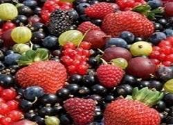 Mercado de fruta suave se establece para un potencial crecimiento en todo el mundo: excelente tecnología tendencias con análisis de negocio