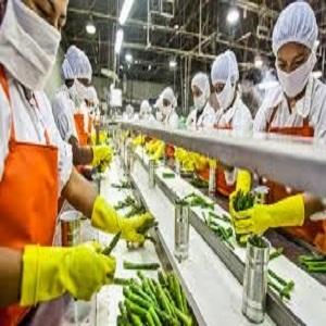 Análisis de ingresos por ventas de crecimiento del mercado de procesamiento de alimentos 2020-2026