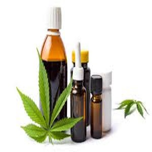 Mercado de Cannabis Medicinal Next Big Thing Gigantes Mayores Aphria, Cosecha de Manitoba, Phytokann