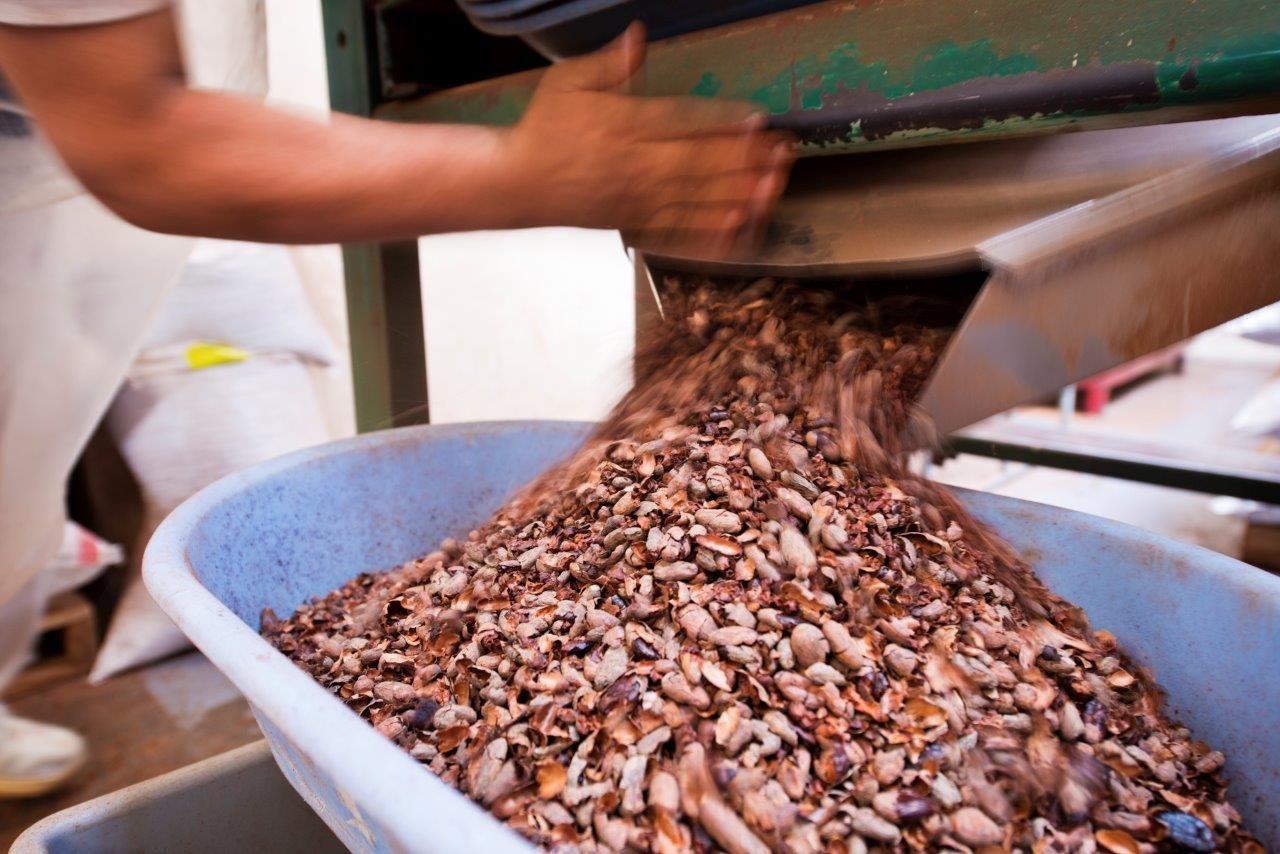 Crece el consumo de chocolate saludable en España, según datos recogidos por Pacari